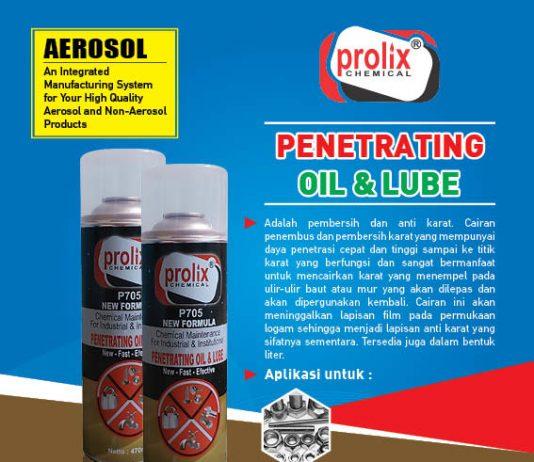 Pembersih karat WD merk prolix ukuran 500 ml / Penetrating Oil pelumas baut